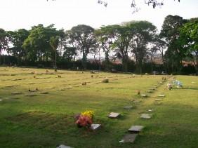 Floricultura Cemitério Municipal Jardim São Paulo Foz do Iguaçu - PR