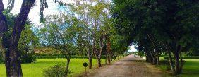 Floricultura Cemitério Jardim das Flores – Cotia