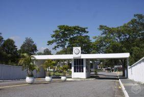 Floricultura Cemitério Memorial Jardim  - Santo André - SP