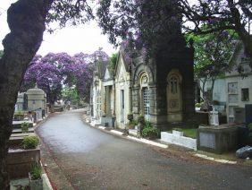 Floricultura Cemitério do Araça