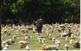 Floricultura Cemitério Campo da Esperança – Brasília
