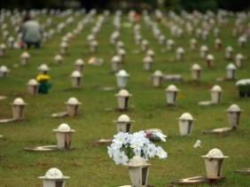 Floricultura Cemitério de Taguatinga – Brasília