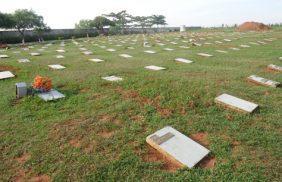 Floricultura Cemitério Parque dos Lírios