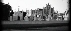 Floricultura Cemitério São João Batista – Fortaleza – CE
