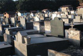 Floricultura Cemitério Paroquial Nossa Senhora do Carmo