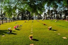 Floricultura Cemitério Parque das Colinas Verdes – Franco da Rocha – SP