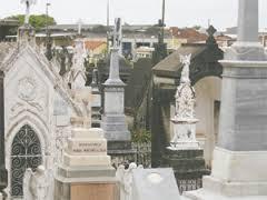 Floricultura Cemitério Memorial da Paz