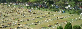 Floricultura Cemitério Parque das Flores - Recife
