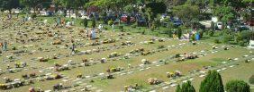 Floricultura Cemitério Parque das Flores – Recife