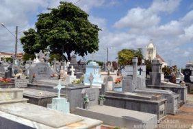Floricultura Cemitério Público da Redinha