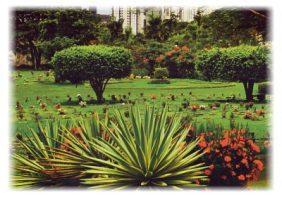 Floricultura Cemitério Jardim da Saudade 2