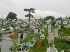 Floricultura Cemitério Santa Helena - Manaus - AM