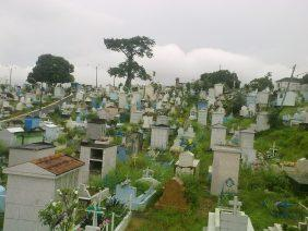 Floricultura Cemitério Santa Helena – Manaus – AM