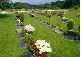 Floricultura Cemitério Ecoparque dos Colibris Embu das Artes - SP