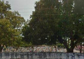 Floricultura Cemitério Poti Velho – PI