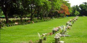 Floricultura Cemitério Parque da Cidade