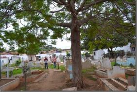 Floricultura Cemitério Jardim das Oliveiras Açailândia – MA