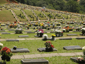 Floricultura Cemitério Alpha Memorial Barueri – SP