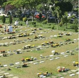 Floricultura Cemitério Parque das Flores Campinas– SP