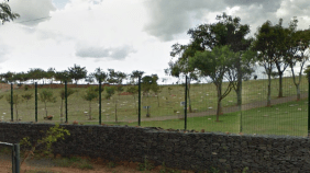 Floricultura Cemitério Parque dos Flamboyants