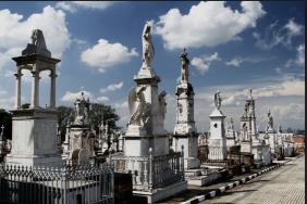 Floricultura Cemitério da Saudade Caieiras - SP