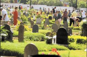 Floricultura Cemitério Jardim da Saudade Blumenau – SC