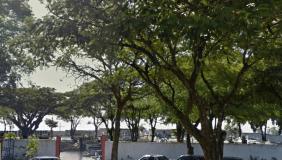 Floricultura Cemitério São Benedito Paranaguá - PR
