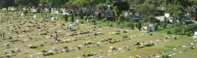 Floricultura Cemitério e Crematório Parque das Flores São jose dos campos – SP