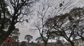 Floricultura Cemitério Municipal Embu Guaçu – SP