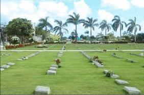 Floricultura Cemitério Jardim Moratense Francisco Morato - SP