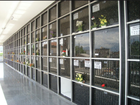 Floricultura Cemitério Metropolitano Cemitério Vertical São Vicente -SP