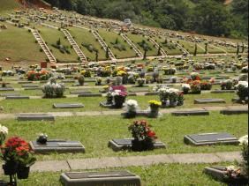 Floricultura Cemitério da Grande Planíce Praia Grande – SP