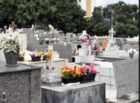 Floricultura Cemitério Nossa Senhora da Piedade - Jundiaí - SP
