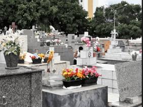 Floricultura Cemitério Nossa Senhora da Piedade – Jundiaí – SP