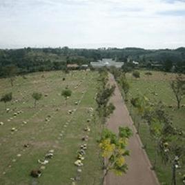 Floricultura Cemitério Parque das Aleias Campinas – SP