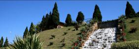 Floricultura Cemitério Parque Vale dos Pinheirais Mauá – SP