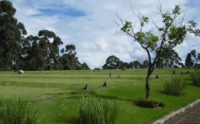 Floricultura Cemitério Memorial Parque Paulista Embu das Artes – SP