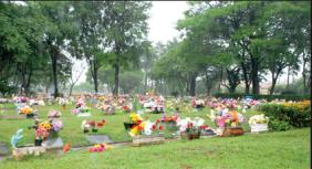 Floricultura Cemitério Saudades de Limeira - SP