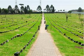 Floricultura Cemitério Parque Senhor Do Bonfim São José dos Pinhais - PR