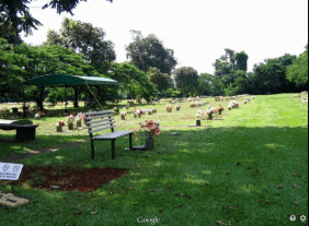 Floricultura Cemitério Parque de Maringá - PR