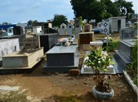 Floricultura Cemitério Jardim Cidade Luz Santo Antônio do Descoberto - GO