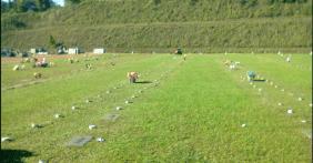 Floricultura Cemitério Bela Vista Parque  -Caraguatatuba SP