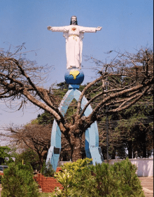 Floricultura Cemitério Cristo Rei Apucarana, Paraná
