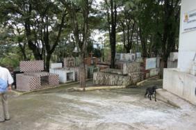 Floricultura Cemitério Jardim da Paz Araçariguama - SP