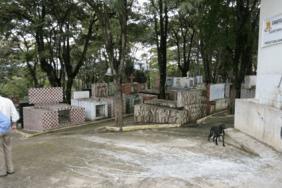 Floricultura Cemitério do Ariston Carapicuíba – SP