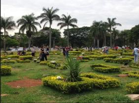 Floricultura Cemitério Memorial dos Lagos Cabo Frio - RJ