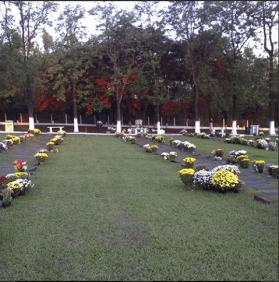 Floricultura Cemitério Memorial Parque Jardim das Oliveiras Barreto – SP
