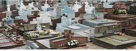 Floricultura Cemitério municipal de Araucária – PR