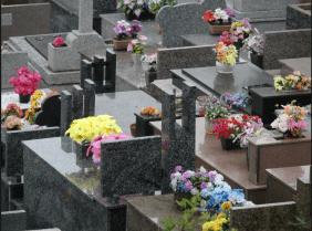 Floricultura Cemitério Jardim Monsenhor Albino Catanduva - SP