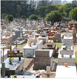 Floricultura Cemitério Municipal de Araras – SP